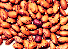 Vegan Cooking: Guide to Dry Beans