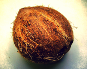 28 Uses for Coconut Oil: Face, Hair & Body