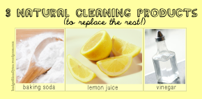 3 Natural Cleaning Products (to Replace the Rest)