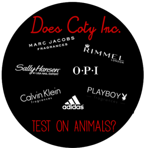 Email Response from Coty Inc. (Animal Testing)